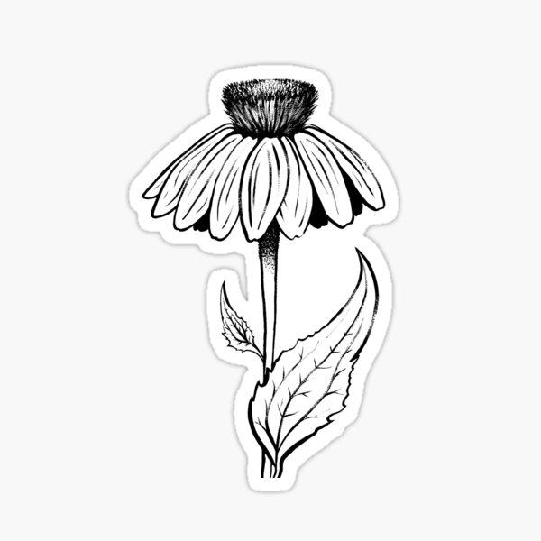 Echinacea Purpurea Sticker