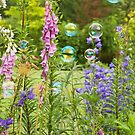 Bubble Garden by Tracy Riddell