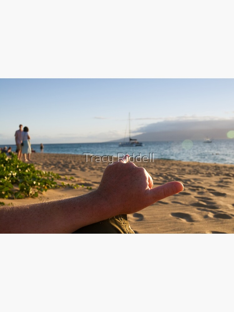 Aloha Spirit by taos