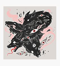 Wild Wolves With Many Eyes Photographic Print