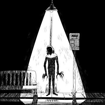 Spotlight by SoroTrax