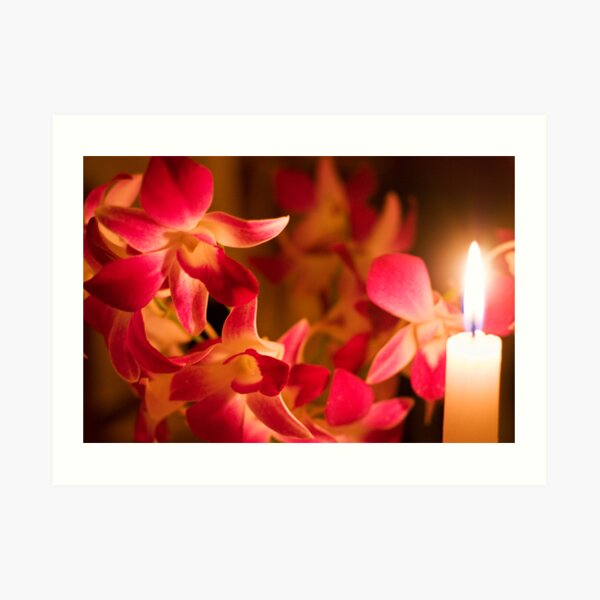 Orchids by Candlelight Art Print