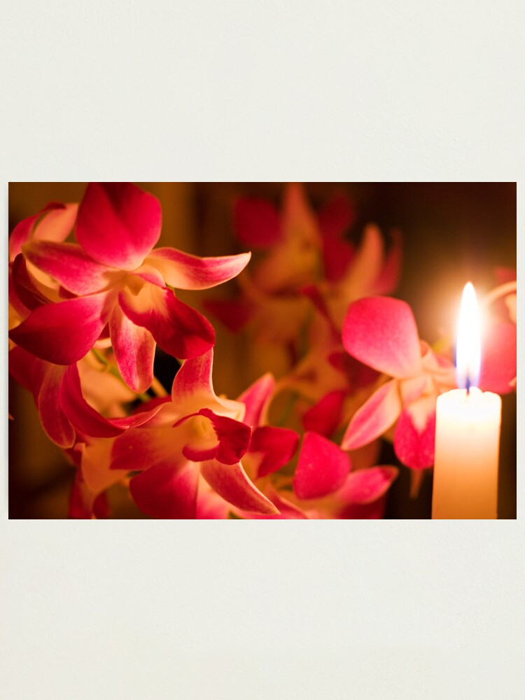 Alternate view of Orchids by Candlelight Photographic Print