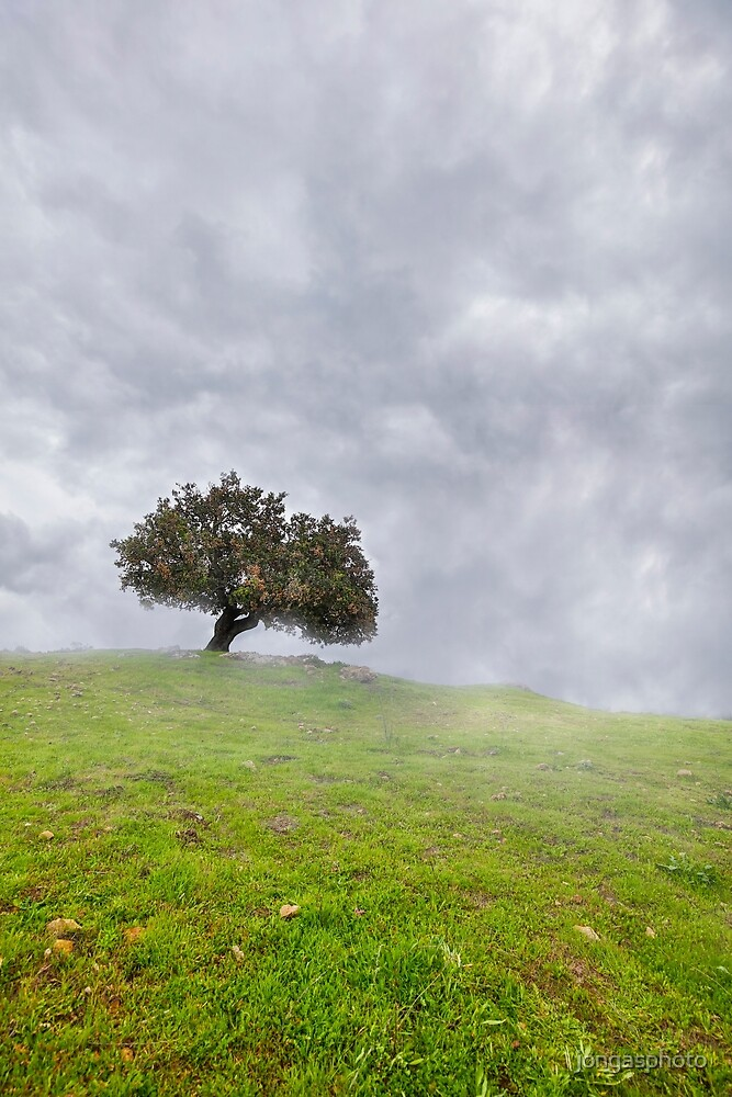 Cloudy Day by jongasphoto