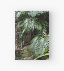 City water fall Hardcover Journal