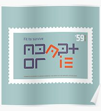 Fit to Survive Poster