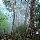 Mount Wilson Fantasy by Philip Johnson