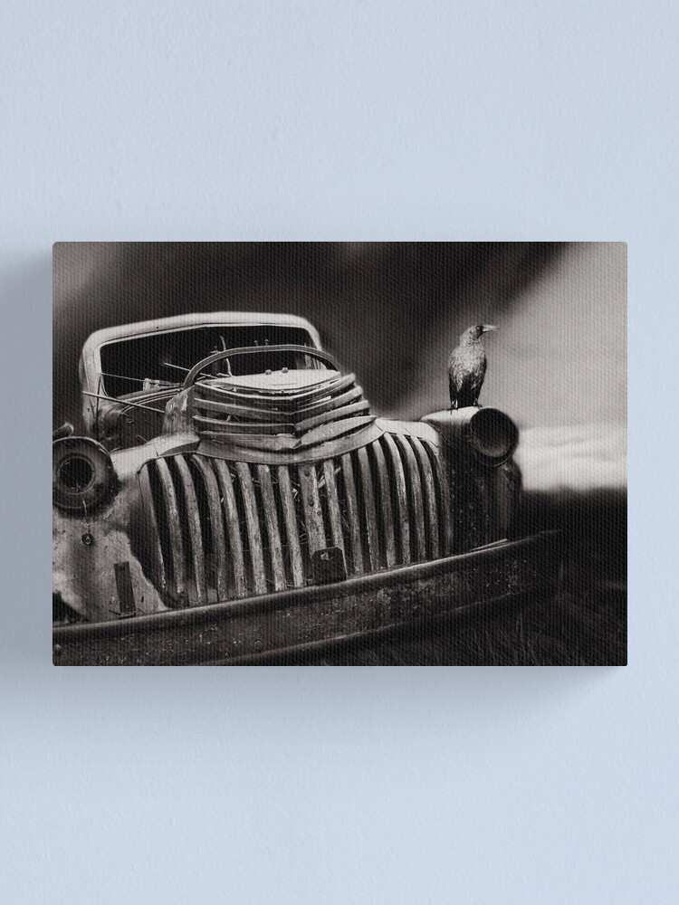 Alternate view of Storm Watcher Canvas Print
