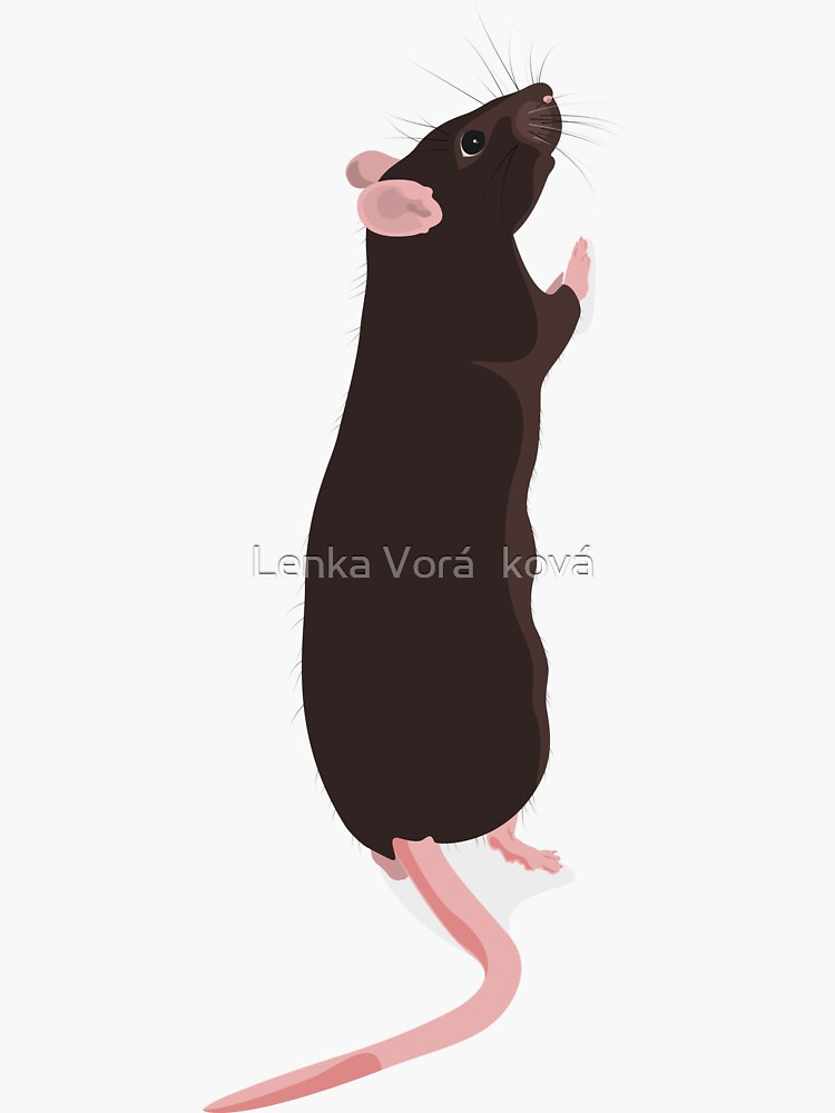 Standing rattie by Trin4ever