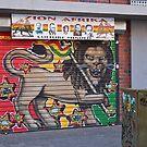 Painted Roller Shutter Door by RatManDude