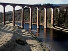 Leaderfoot Viaduct by CiaoBella