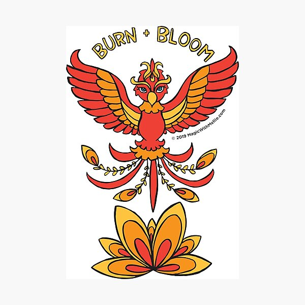 Burn and Bloom - Animals of Inspiration Phoenix Illustration Photographic Print