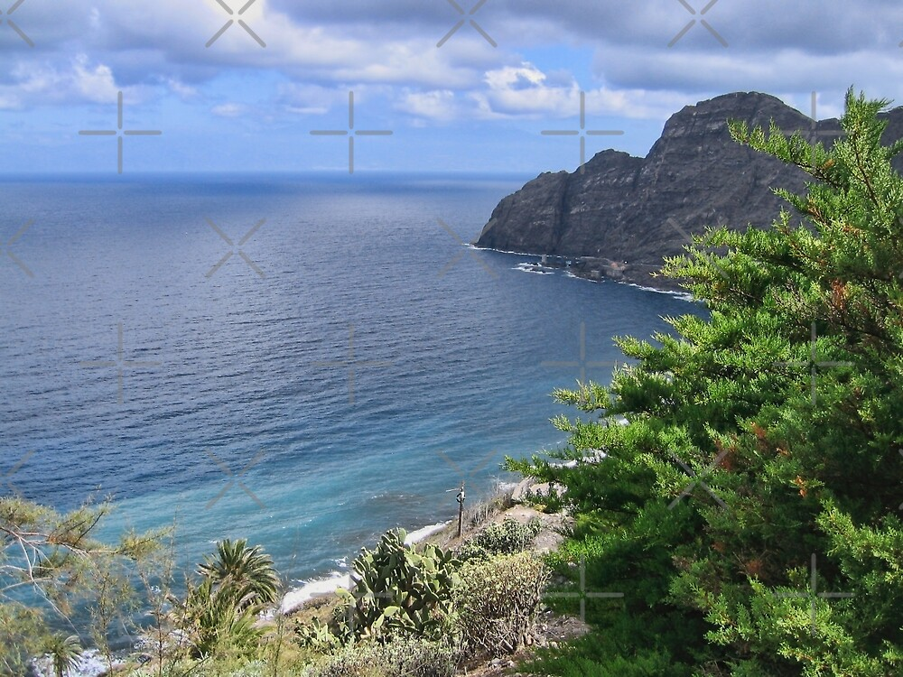 Sea View from La Gomera by Avril Harris