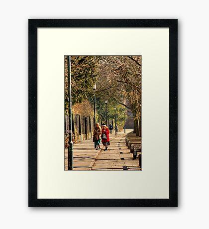 In Conversation. Framed Print
