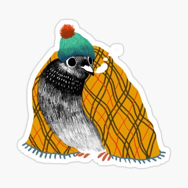 Cozy Pigeon Sticker