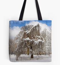 In my Winter Clothing Tote Bag