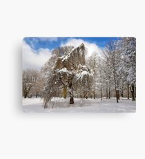 In my Winter Clothing Canvas Print