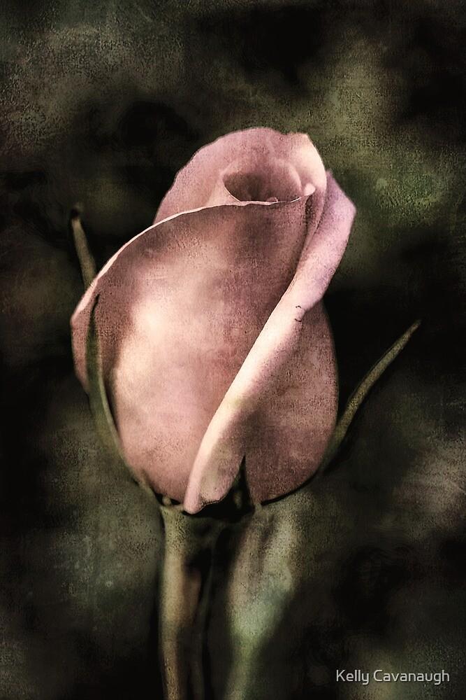 The Rose by Kelly Cavanaugh