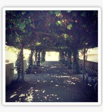 Gardens at UC Davis Sticker