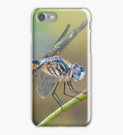 Dashing Mr. Blue Dasher iPhone Case/Skin