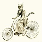 Victorian Cat Series 03 by mirzers