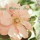 Mother's Day Gift Rose by picketty