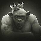 King by Lukas Brezak