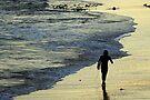 Main Beach at Torquay by Darren Stones