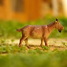 fun with a plastic goat by Soxy Fleming