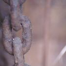 Chains by Lorelle Gromus