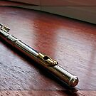 A Silver Flute in a Mirrored Frame by BlueMoonRose
