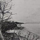 Nelson's Beach, Vincentia by TedDwyer