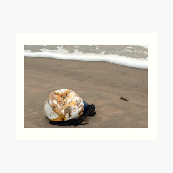 Lost buoy and shell Art Print
