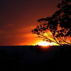 Hill's Sunset by Evita