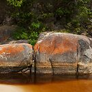 Tidal River, Wilsons Promontory National Park by SusanAdey
