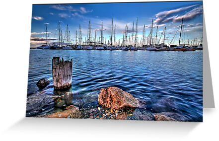 A View Ahoy by Shannon Rogers