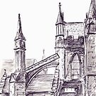 St Patrick's Cathedral, Dublin by Barnaby Edwards