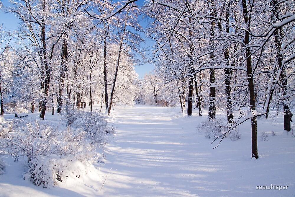 Warsaw Winter Wonderland by seawhisper