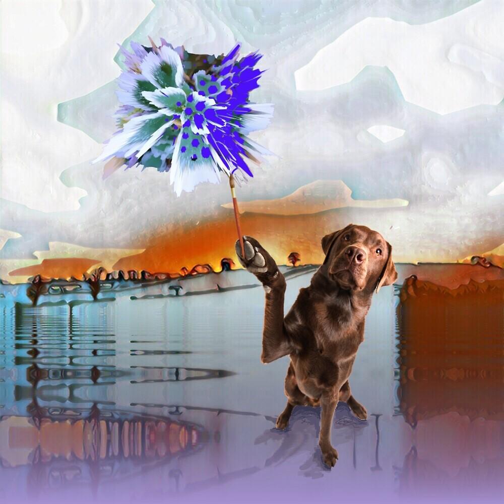 Dog Vision. by Bo Jones