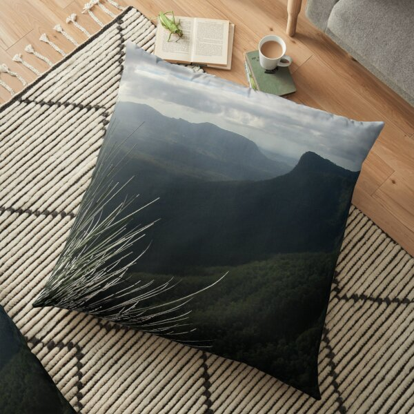 Blackbutts seen from The Pinnacle Floor Pillow
