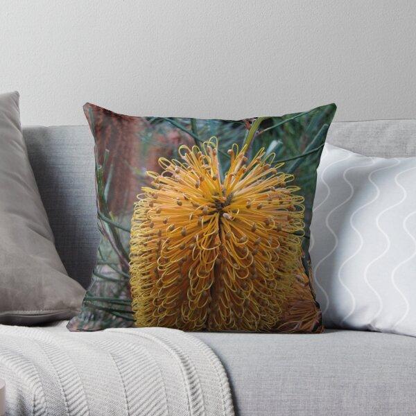 Banksia Flower first blush Throw Pillow