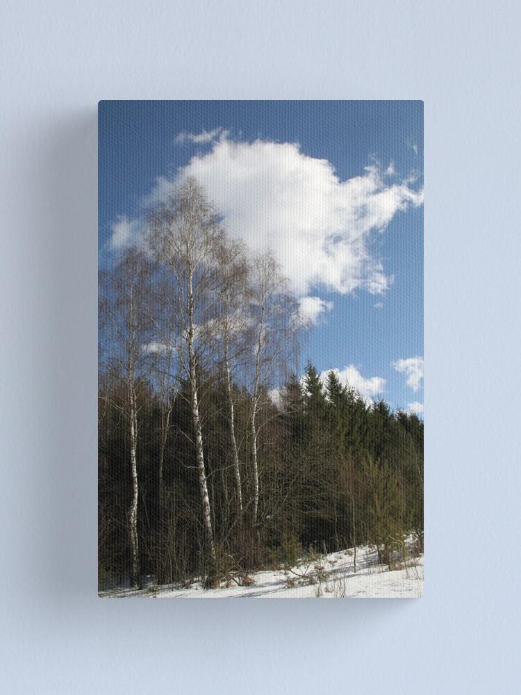 Alternate view of Winter Sunshine Canvas Print