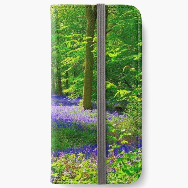 Hitch Wood, St Paul's Walden, Hertfordshire iPhone Wallet