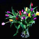 When It's Spring Again.... by Lynne Morris