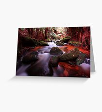 """Little Forester River-2"" Greeting Card"