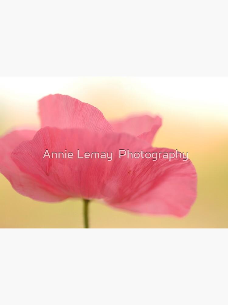 La Poppy by ajlphotography