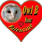 Owl B your Valentine by Dave  Knowles