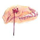 Mother Nature - Black Bear Skull by Rachelle Skinner