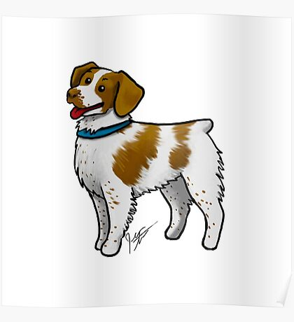 Brittany Spaniel Poster