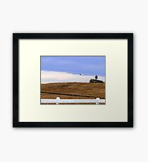 The Fly-By Framed Print